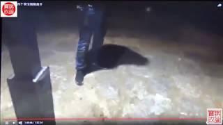 Download Video 紧急直播:华涌与董建彪被抓捕全过程、董瑶琼泼墨蝴蝶效应在扩大(全民泼墨习近平运动系列二) MP3 3GP MP4