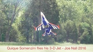 Quique Somenzini flies his 3-D Jet at Joe Nall 2016