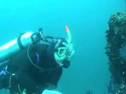 Pierre Villette : Plongée sous-marine à Oman 2/2