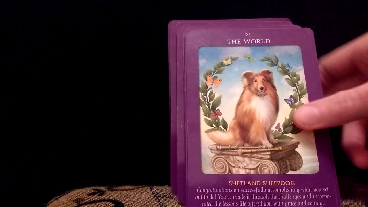 Animal Tarot Deck Unboxing Doreen Virtue Radleigh Valentine Angel
