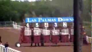 La Cartelina vs El Chaparro 250yds Las Palmas Downs 10/13/13