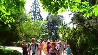Лучшие экскурсии по Крыму от ТК