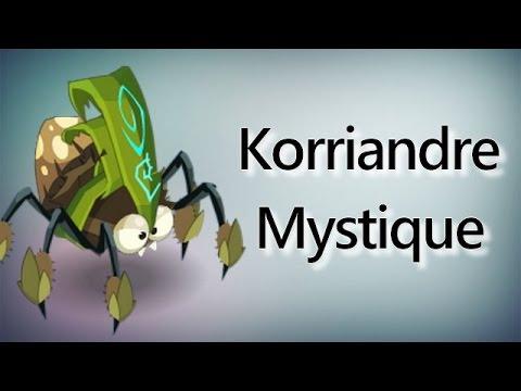 [Dofus] Korriandre (Mystique) // Technique OS Eliotrope/Iop