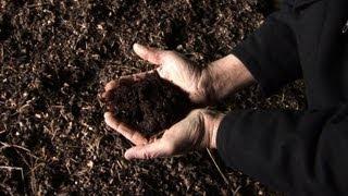 Agriculture: un fertilisant naturel pour remplacer l'engrais