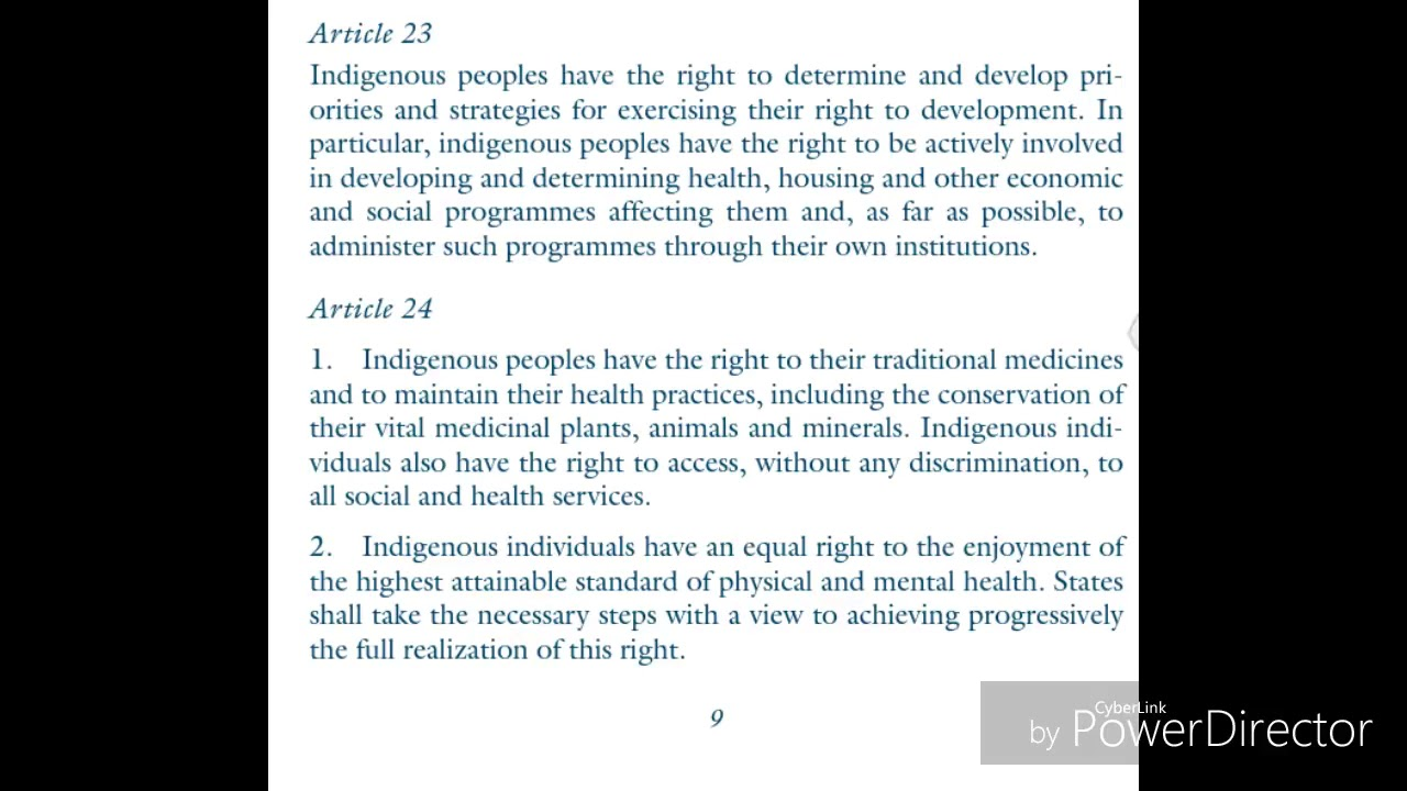 United Nations Declaration on The Rights of Indigenous Peoples (UNDRIP) SHARE SHARE SHARE