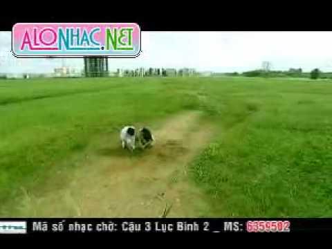 Doi Ban Chan- Vy Oanh & Ly hai
