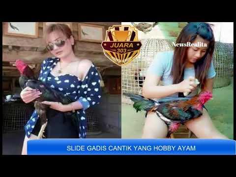 GADIS GADIS CANTIK INI HOBBY AYAM