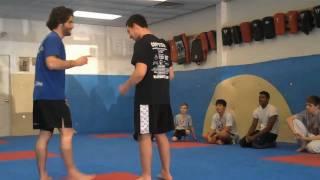 Precision MMA Seminar - Lagrange, NY