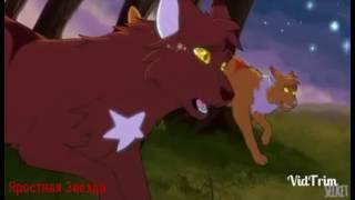 Коты - Воители - Смерть друга ( Заказ )
