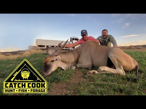 Eland hunt and cook with pomegranate dessert in the karoo, South Africa | CATCH COOK