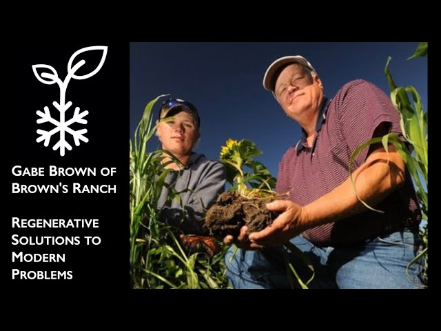 Gabe Brown on Regenerative Solutions to Modern Problems - Ice Age Farmer Podcast