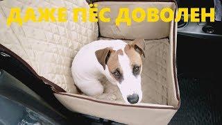 Офигенная автомобильная перевозка для собак с Aliexpress!
