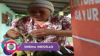 Sinema Indosiar - Cita Cita Mulia Penjual Lontong Sayur
