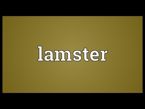 Header of lamster