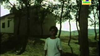 Kalo Jole
