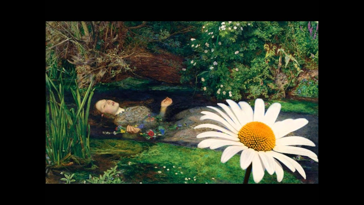 Daisy From Ophelia And The Language Of Flowers By Kevin Jones