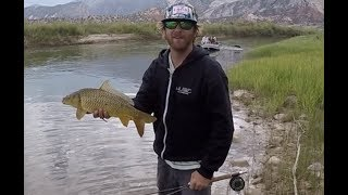 ONE YEAR OF FLY FISHING VIDEOS