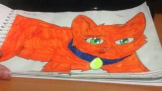 Мои рисунки про котов-воителей