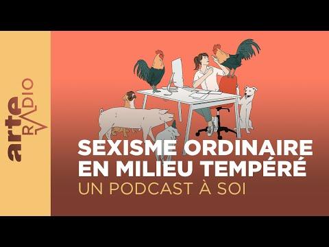 Sexisme ordinaire en milieu tempéré - ARTE Radio