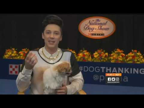 Johnny Weir is cultural attache of National Dog Show