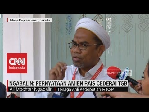 Ngabalin: Pernyataan Amien Rais Cederai TGB