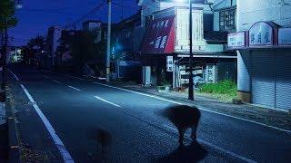 夜は無人の帰還困難区域・双葉町を無人カメラで撮影