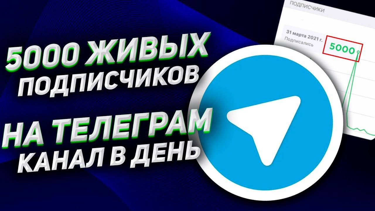 накрутка подписчиков на канал телеграм