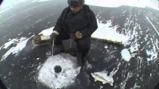Ловля судака на балансир зимой, река Волга