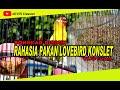 Rahasia Pakan Lovebird Agar Cepat Gacor Dan Konslet  Mp3 - Mp4 Download