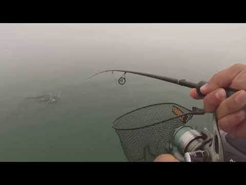 Grand Traverse Smallmouth Fishing
