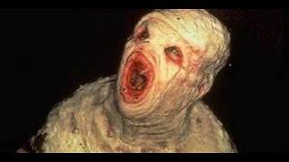 top 5 most disturbing videos found on the internet