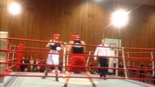 Boxing knockout. ( The Tiger ) in Danmark .ربيع الزرعي