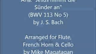 "Aria: ""Jesus nimmt die Sünder an"" (BWV 113 No 5) for Flute, Horn & Cello"