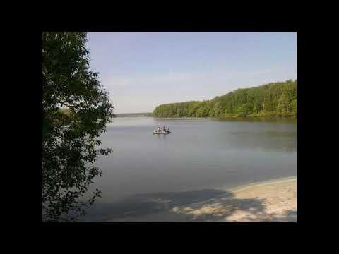 Лесной участок по Каширскому ш. 38 км от МКАД