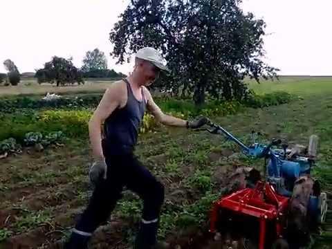 Картофелекопалка Беларус КМ-1