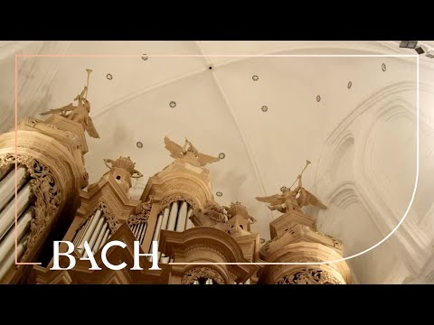 Bach - Fuga super: Jesus Christus unser Heiland BWV 689 - Van Doeselaar | Netherlands Bach Society