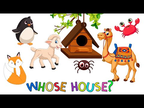 Learn Animals for Kids | Whose is this house | English educational video for kids