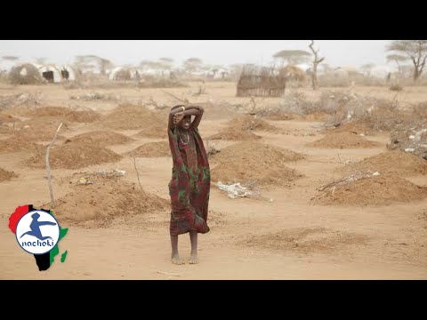 Top 10 African Countries Climate Change Will Destroy