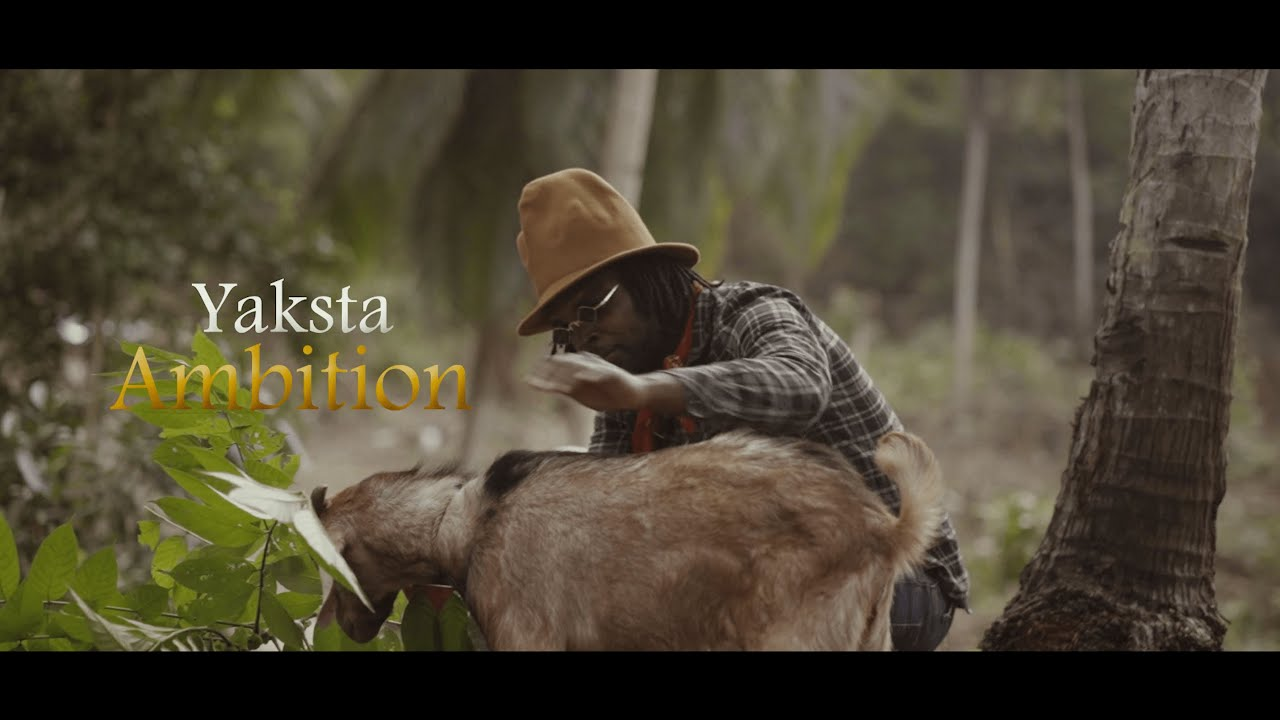 Download Yaksta (Bush Lawd) - Ambition (Official Video)