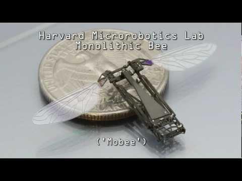 Popup Fabrication of the Harvard Monolithic Bee Mobee