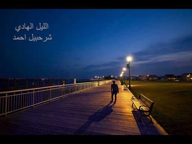 wandering alone at night - HD3872×2592