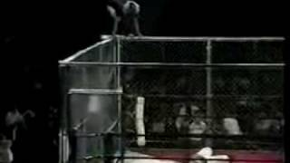 Guillotine Legdrop From the Cage (Bull Nakano)