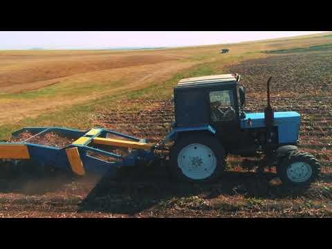 Зольский картофель. Период уборки 2020 г.