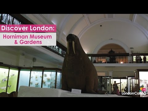 Discover London: The Horniman Museum