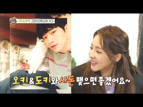[Section TV] 섹션 TV Sandara Park, What if cats get married?20180318