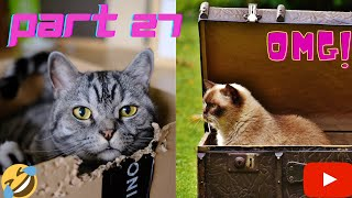 Funny Cats And Dogs FAILS COMEDY videos Compilation. Part 27