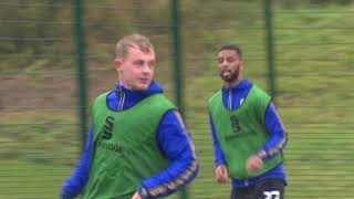 Stags in training