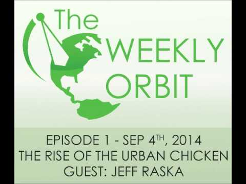 Episode 1 - The Rise Of The Urban Chicken