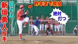 昨年まで現役…日ハム新垣勇人投手!東芝野球部のグラウンドでトクサンと勝負!