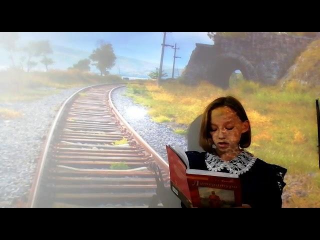 Изображение предпросмотра прочтения – АльбинаСлепкова читает произведение «В дороге» И.С.Тургенева